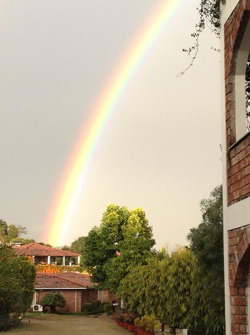 Click for larger image of Rainbow at SRSG